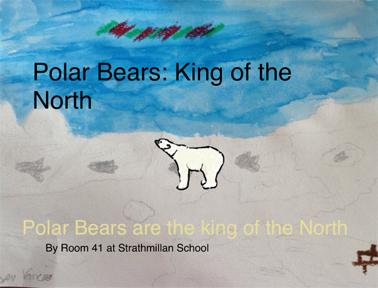 polar bear book.pdf